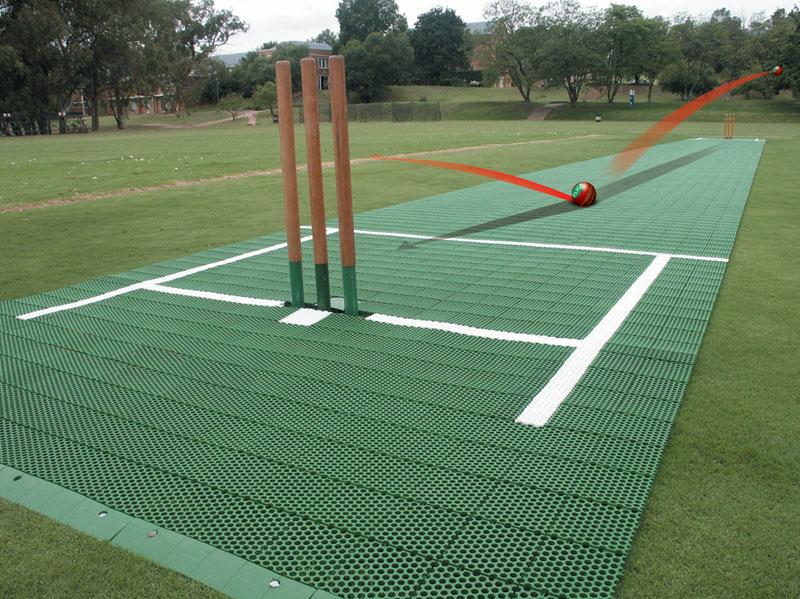 Cricket court diagram